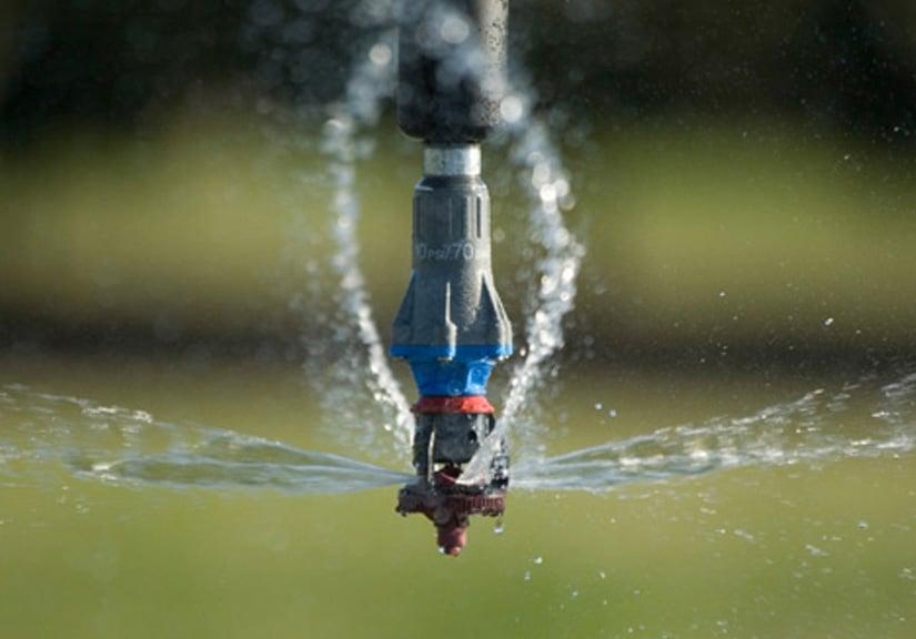 Watering Uniformity